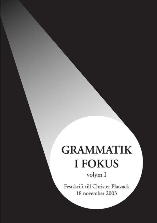 Grammatik i fokus